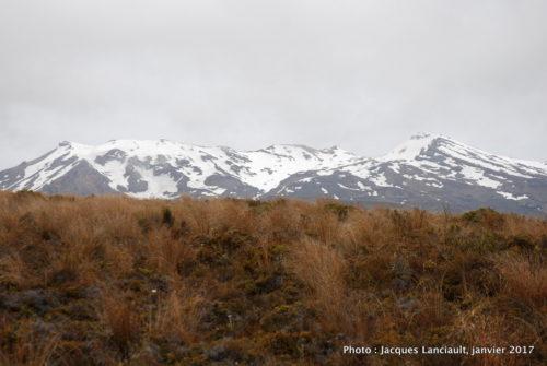 Mont Ruapehu, île du Nord, Nouvelle-Zélande
