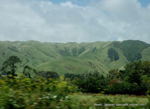 Sud de l'île du Nord, Nouvelle-Zélande