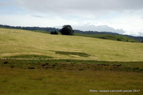 Parc national de Tongariro, île du Nord, Nouvelle-Zélande