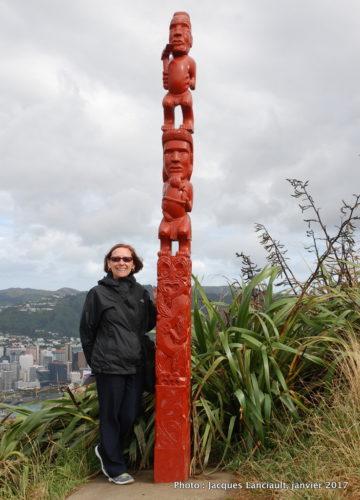 Wellington vue du Mount Victoria Lookout, Wellington, île du Nord, Nouvelle-Zélande