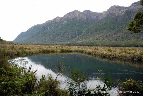 Parc national de Fjordland, île du Sud, Nouvelle-Zélande
