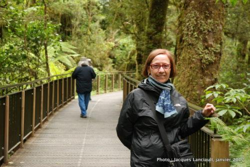 TheChasm Walk, parc national de Fjordland, île du Sud, Nouvelle-Zélande