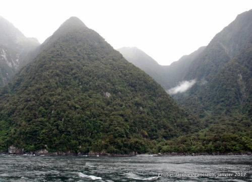 Spirit of Milford, Southern Discoveries, Milford Sound, île du Sud, Nouvelle-Zélande