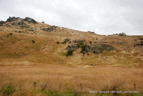 Otago, île du Sud, Nouvelle-Zélande
