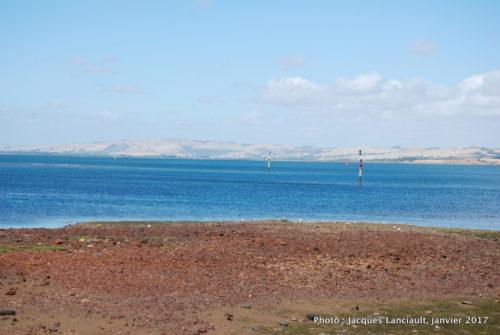 Phillip Island, Australie