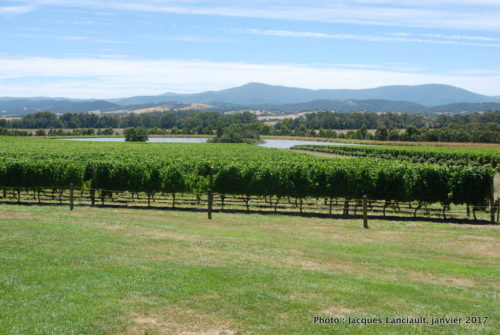 Green Point, Yarra Valley, État du Victoria, Australie