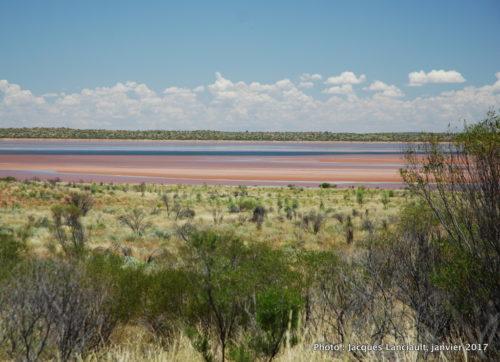Lac salé, Outback, Australie