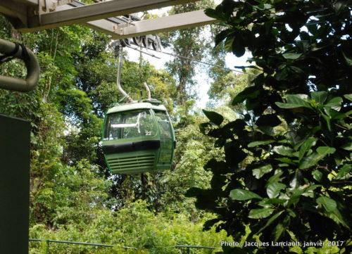 Skyrail Rainforest Cableway, Kuranda, Queensland, Australie