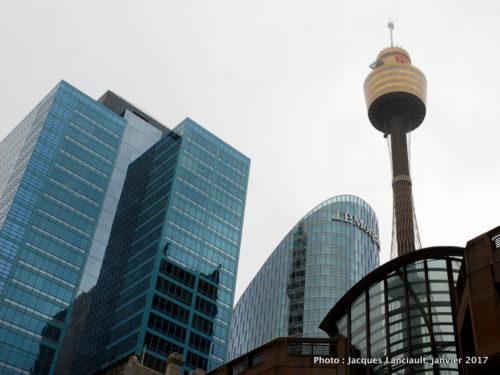 Sydney Tower, Sydney, Nouvelle-Galles-du-Sud, Australie
