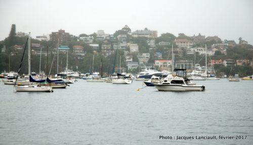 Rose Bay, Sydney, Nouvelle-Galles-du-Sud, Australie