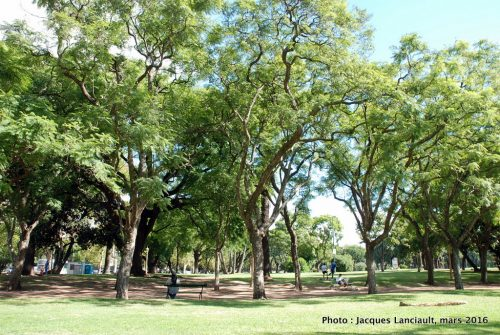 Barrio Parlermo, Buenos Aires, Argentine