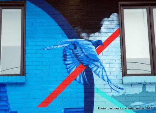 Fenêtres sur le quartier Ahuntsic, Montréal, Québec