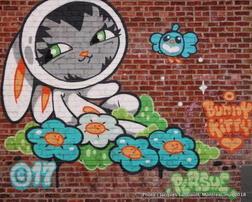 Bunny Kitty, Persue, Montréal, Québec