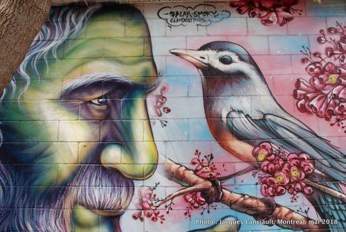 Le vieillard et l'oiseau, Shalak et Smoky, Montréal, Québec