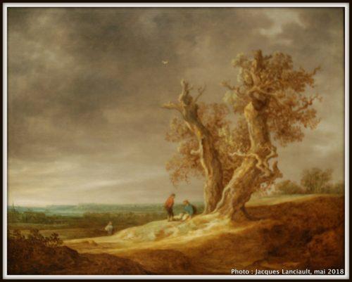 Paysage avec deux chênes, Rijksmuseum, Amsterdam, Pays-Bas