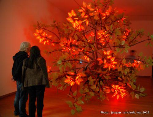L'arbre de Ténéré, Stedelijkmuseum, Amsterdam, Pays-Bas