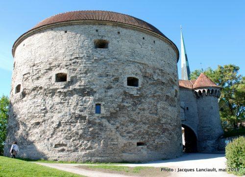 Grosse Marguerite, Tallinn, Estonie