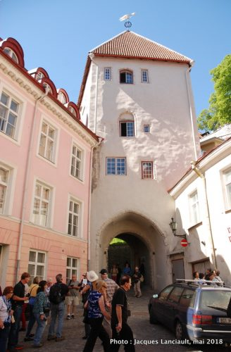 Tour de la porte Jambe longue, Tallinn, Estonie