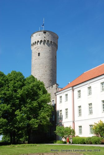 Tour Pikk Hermann, Tallinn, Estonie