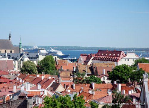 Patkuli Vaateplatvorm, Tallinn, Estonie