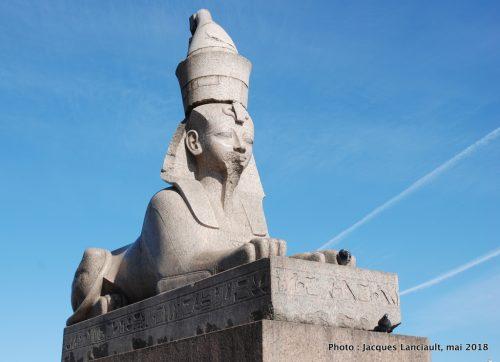Sphinx, Saint-Pétersbourg, Russie