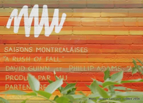 Saisons montréalaises - Rush of Fall, David Guinn et Phillip Adams, Montréal, Québec
