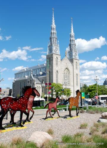 Cathédrale Notre-Dame, Ottawa