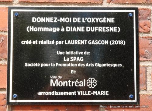 Diane Duresne, par Laurent Gascon, Montréal, Québec