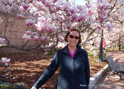 Jardin Enid A. Haupt, Washington, D.C., États-Unis