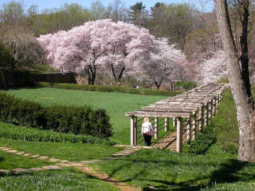 Dumbarton Oaks, Washington D.C., États-Unis