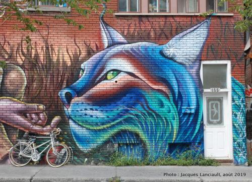 Le bûcheron et le lynx, Clandestinos, Montréal, Québec