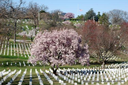 Arlington National Cemetery, Arlington, Virginie, États-Unis