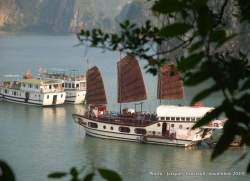 Baie d'Hạ Long, Vietnam