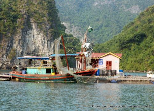 Baie d'Ha Long, Vietnam