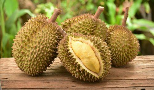 Durian, Vietnam