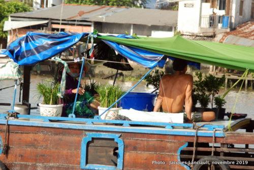 Fleuve Mékong, Vietnam