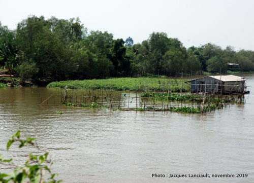 Fleuve Mékong, Cải Bè, Vietnam