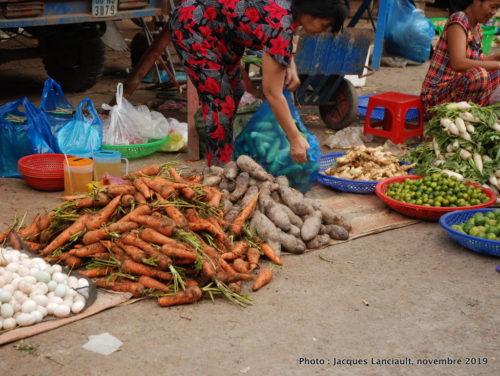 Marché public, Sa Đéc, Vietnam