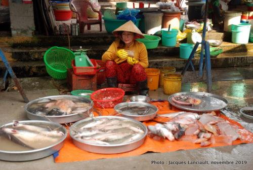 Marchande de poissons, Sa Đéc, Vietnam