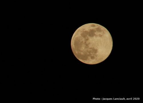 Super pleine lune rose
