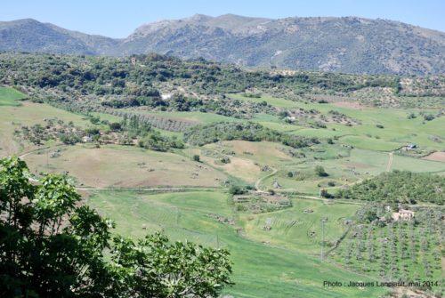 Mirador de Aldehuela, Ronda, Andalousie, Espagne