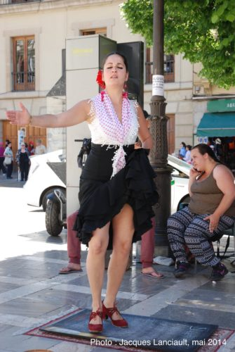 Spectacle de flamenco, Grenade, Andalousie, Espagne