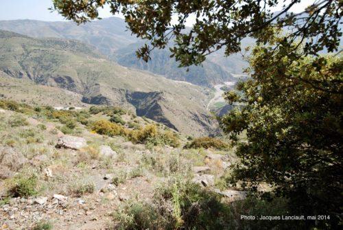 Las Alpujarras, Andalousie, Espagne