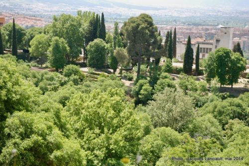 Plaza de Armas, Alcazaba, Alhambra, Grenade, Andalousie, Espagne