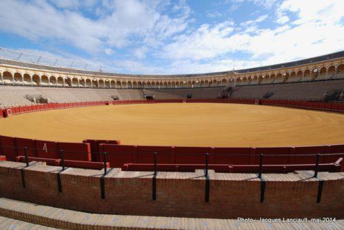 Arène de la Plaza de Toros, Séville, Andalousie, Espagne