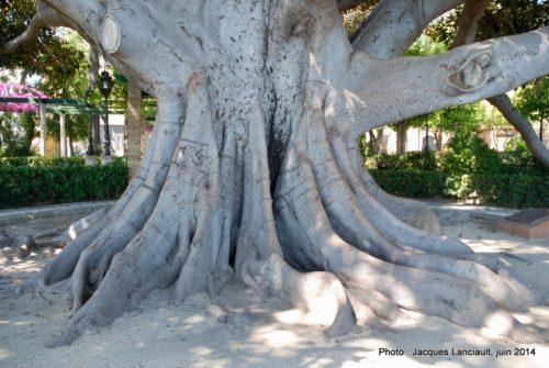 Jardines de Alameda Apodaca, Cádiz, Andalousie, Espagne
