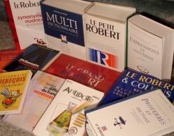 Quelques-uns de mes dictionnaires.