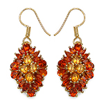 14K Yellow Gold Plated 4.88 Carat Genuine Citrine .925 Sterling Silver Earrings