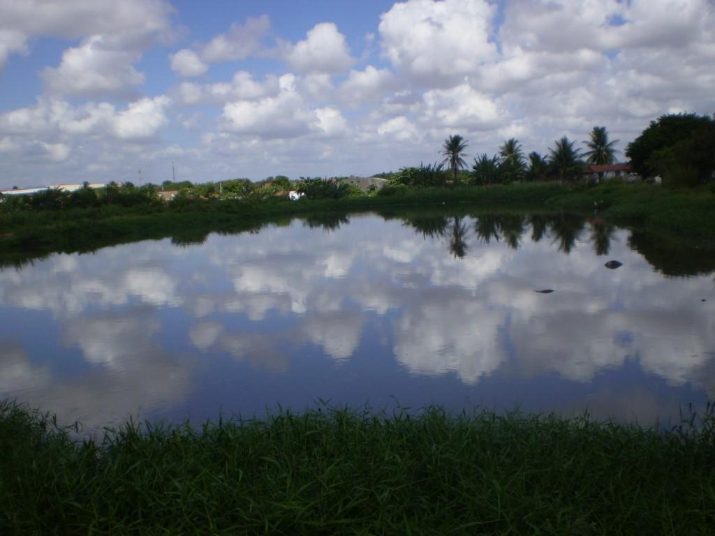 A água que não era utilizada para consumo humano da estação da Companhia de Água e Esgoto do Ceará foi usada na experiência com o sorgo forrageiro (FOTO: Nilson Araújo)