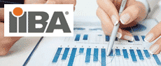 CCBA-2015 - Certification of Competency in Business Analysis Testprep  lesson